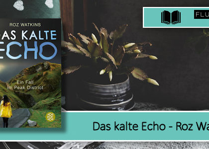 [Rezension] Das kalte Echo